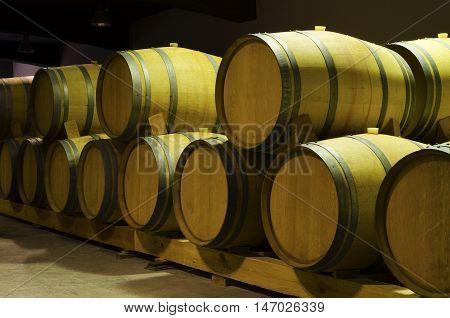 Barrels in basement in winery. Aging wine