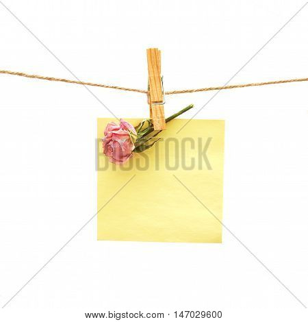 paper and pink rose with clothes peg over white