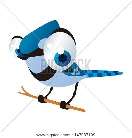 vector cool image of cartoon bright color animal. Funny cute birds. Blue Jay