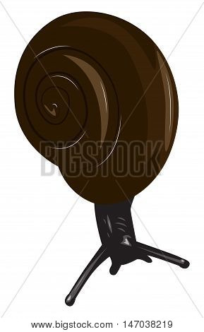 Black snail with a brown shell. Cartoon vector illustration