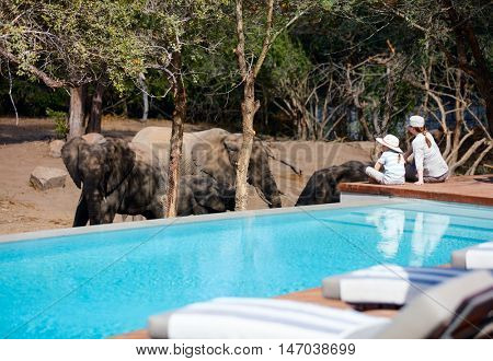 Family of mother and child on African safari vacation enjoying wildlife viewing sitting near swimming pool