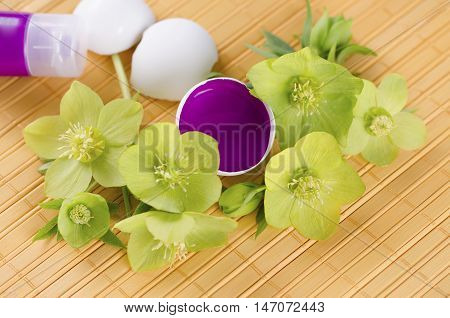 Happy Easter with egg shells and magenta paint on a yellow pad and hellebore