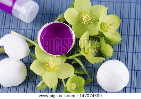 Colorful Easter decoration with egg shell filled with magenta tempera paint and hellebore