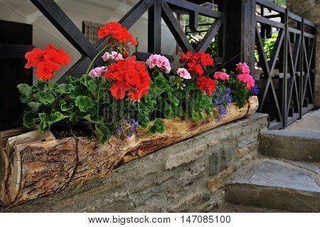 colorful flowerbed with elements of alpien buildings