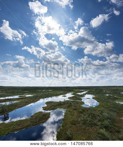 Summer in the bog. Trees clouds and sky reflection in the swamp lake. Forest and marsh. Eevening in moor. Sunny day in fen.