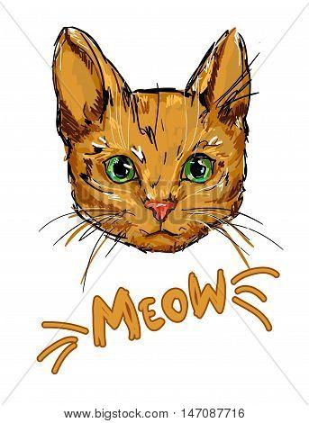 Red-headed cat vector, pet illustration, cat illustration, meow