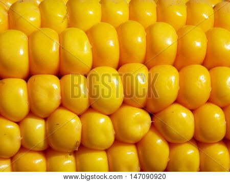 Cooked gold sweet corn texture, corn background, healthy vegetable food detail