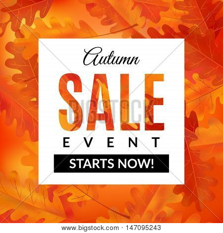 Autumn sale background with abstract background and oak leaves. Vector illustration. EPS 10