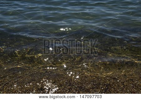 The Transparent Sea Water Near The Shore