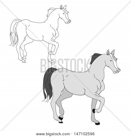 The horse goes trotting outline drawing gray pony on a white background vector illustration