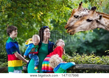 Mother and children school student little toddler boy preschool girl and baby watching and feeding giraffe animals at the zoo. Wildlife experience for parents and kids at animal safari park.