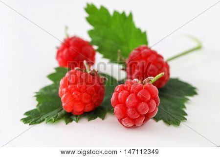 Ripe red raspberries with leaf isolated on white background.