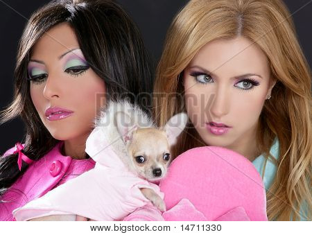 Fashion Doll Women With Chihuahua Dog Pink