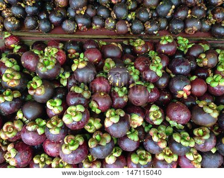 Fresh mangosteen for sale at local market in Thailand.