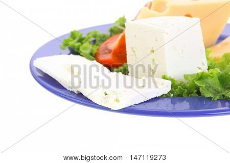 set of gourmet delicatessen cheese slice and chunk ( bar)  white goat greek yellow french aged on green lettuce salad with tomatoes on blue plate isolated over white background