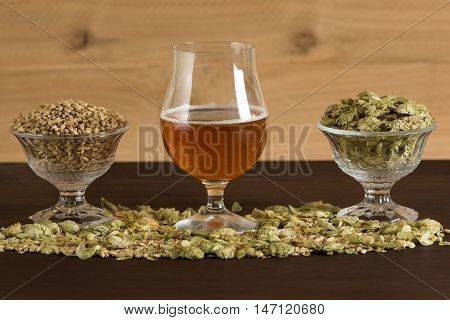 Goblet of beer with malts and hops