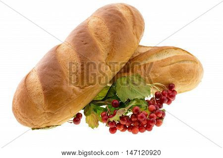 Long loaf bread isolated on white background