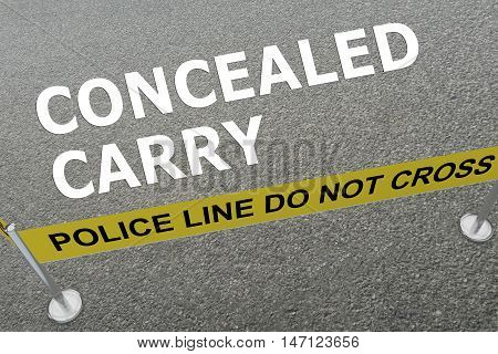 Concealed Carry Concept