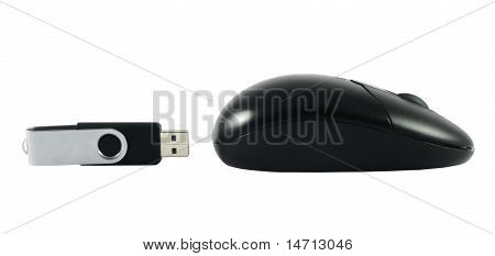 Mouse With Usb Memory Stick