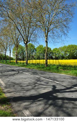 Gazeran France - june 5 2016 : the countryside spring
