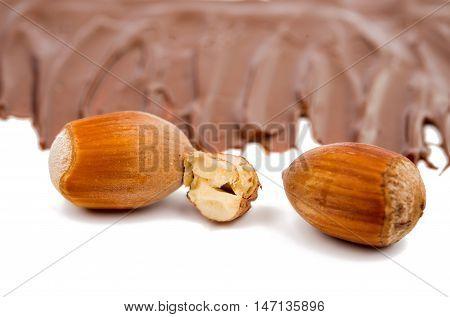 hazel nut food on a white background