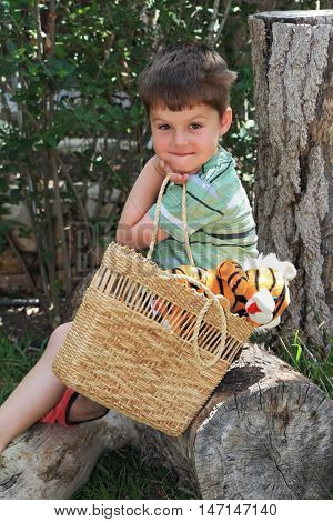 The charming four-year boy on walk in park. He sits on a dry stub and holds a wattled basket with a plush tiger cub.