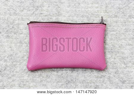 Saving Money Concept, Pink Purse