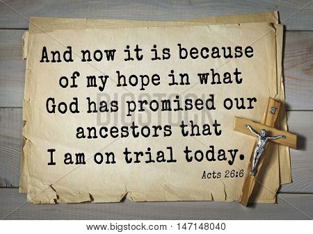 TOP- 100. Bible Verses about Hope.And now it is because of my hope in what God has promised our ancestors that I am on trial today.