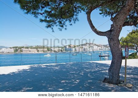 Sea Landscape With Boats And Tree