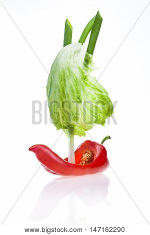 Red pepper sailing boat with salad sail and young onion mast