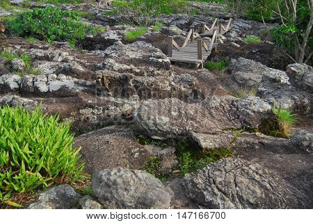 Cup shaped stone. The Pa Hin Ngam National Park in Chaiyaphum, Thailand