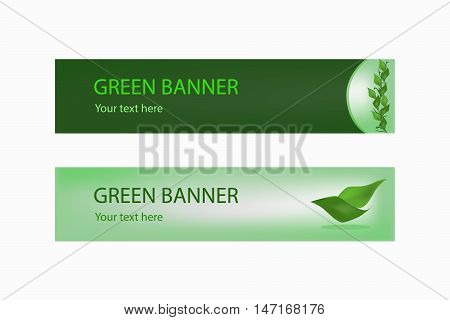 Green ecological banner with green leaves for some text