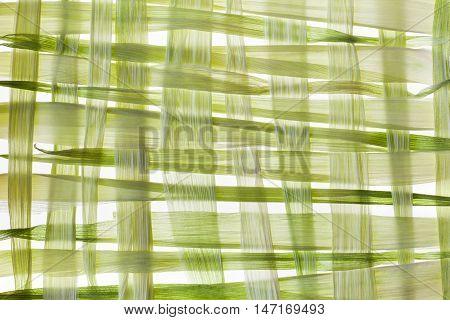 Corn husk wickerwork patern on white background