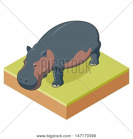 Vector image of the Hippo isometric icon