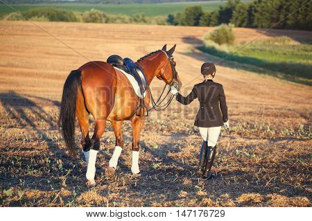 Happy Woman with her Horse - Beautiful young horsewoman next to her horse. equestrian.turned his back to the camera.