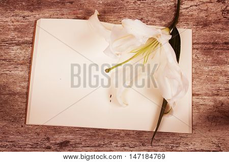 lilly flower on note book wooden background