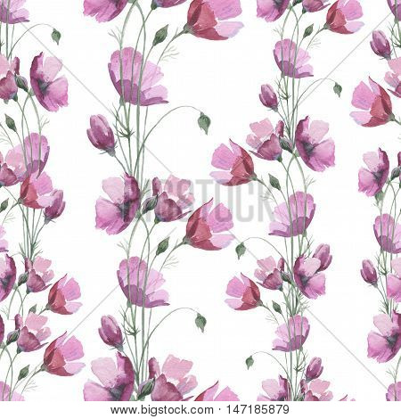 Wildflower flower poppy pattern in a watercolor style. Full name of the herb: papaver, poppy, opium poppy. Aquarelle flower for background, texture, pattern, frame or border.