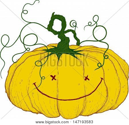 big yellow festive pumpkin with tail and funny little face