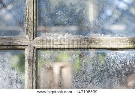 Weathered muntins and window panes obscure interior of aging greenhouse
