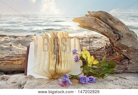 journal and purple roses in beach sand with driftwood log