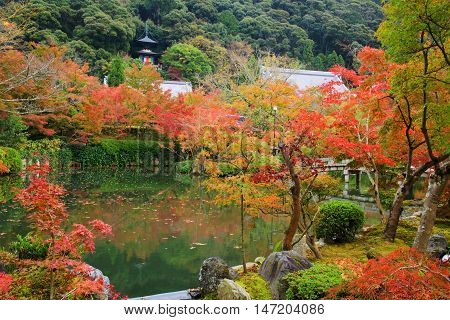 Eikando Temple With Fall Color, Kyoto