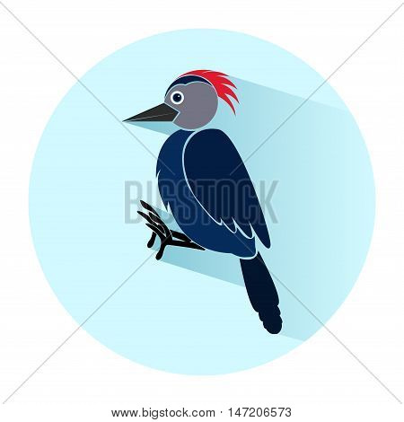 Woodpecker in flat style. Icon. Vector illustration
