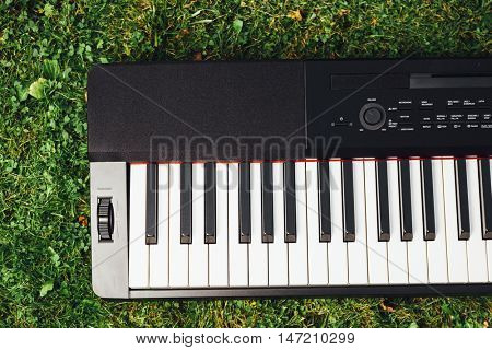 part of electric piano keyboard, green grass background
