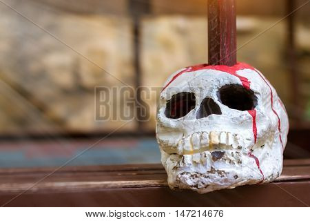 Skull is strung on a pole. Decorative artificial skull of a human head pierced with a spear represents the backdrop for Halloween