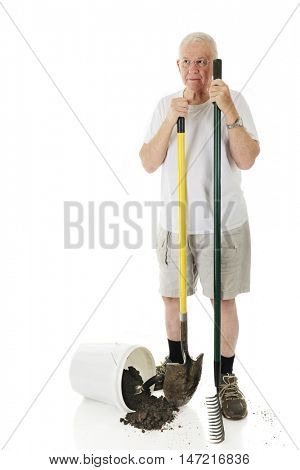 A senior man standing with his garden rake ans shovel next to a spilled bucket of dirt with a hand spade.  On a white background with space on his right for your text.
