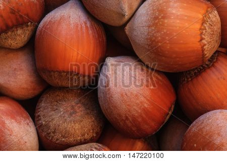 hazelnuts photo, hazelnuts background, raw nuts, nuts shell, hazelnuts pile, hazelnuts for sale, hazelnuts macro