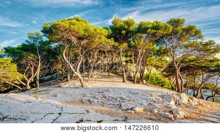 Panoramic View Of Beautiful Nature Of Calanques On The Azure Coast Of France. Calanques - A Deep Bay Surrounded By High Cliffs.