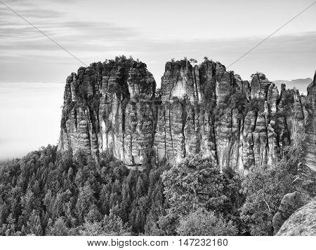 Sharp Sandstone Cliffs Of Schrammsteine Rocks Above Deep Valley. Popular Climbers Resort.