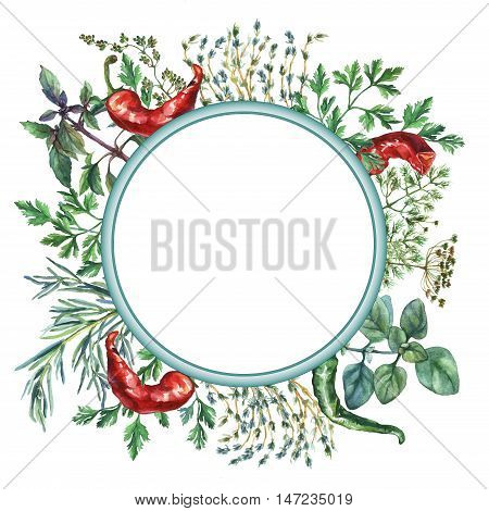 Watercolor herbs and spices frame. Round frame with hand painted food objects: basil, rosemary, parsley, oregano, thyme, dill, knot-grass, green and red pepper on white background.