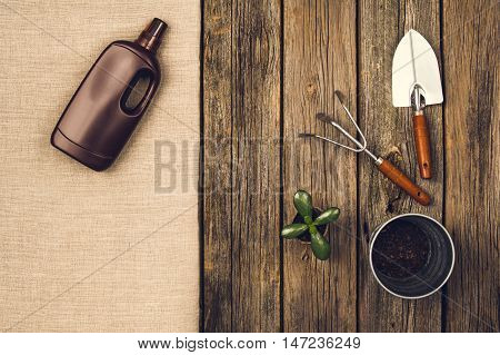 Preparing for a seasonal transplantation of plant or flower, in a gardening, vintage shed near house. Product still life image as lay flat or top view. Planting in the garden concept photograph.